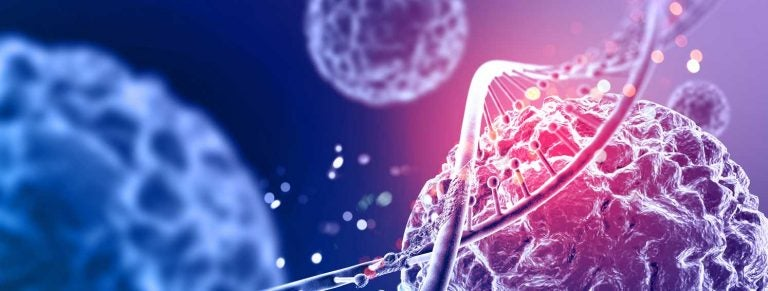 Large-scale vs. single-cell immunosequencing