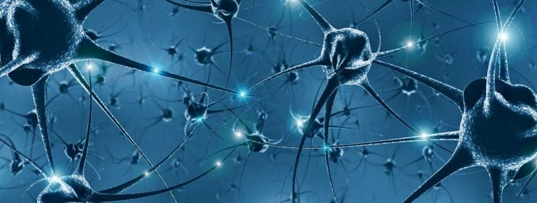 T Cells in the Brain: Using Immunosequencing to Understand Their Role in Neurological Disorders